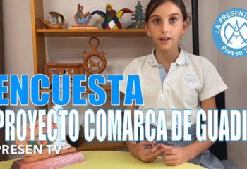 Encuesta turismo Guadix y comarca
